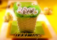 1000 Tage